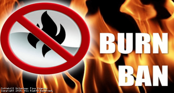 DEC Announces Brush Burning Prohibited in New York State March 16 through May 14