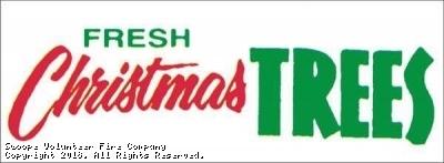2019 Christmas Tree SALE - $25