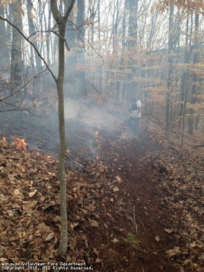 Assist to Stoney Creek for large brush fire